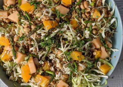 Linse Salat Med Melon, Appelsin, Peanuts, Spidskål, Asparges & Karse
